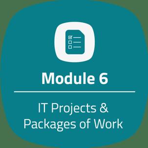 module 6 teal